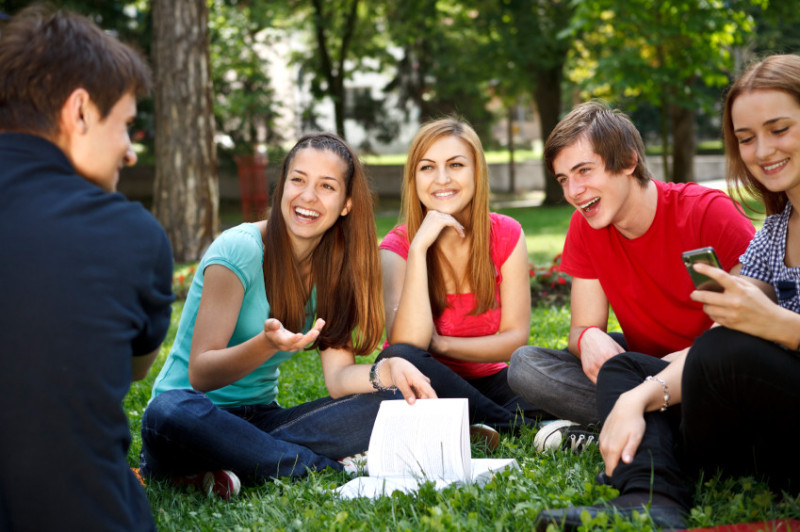 Social Groups: The Meaning, Characteristics, Classification and ...